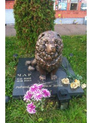 Памятник для животных PZiv_099